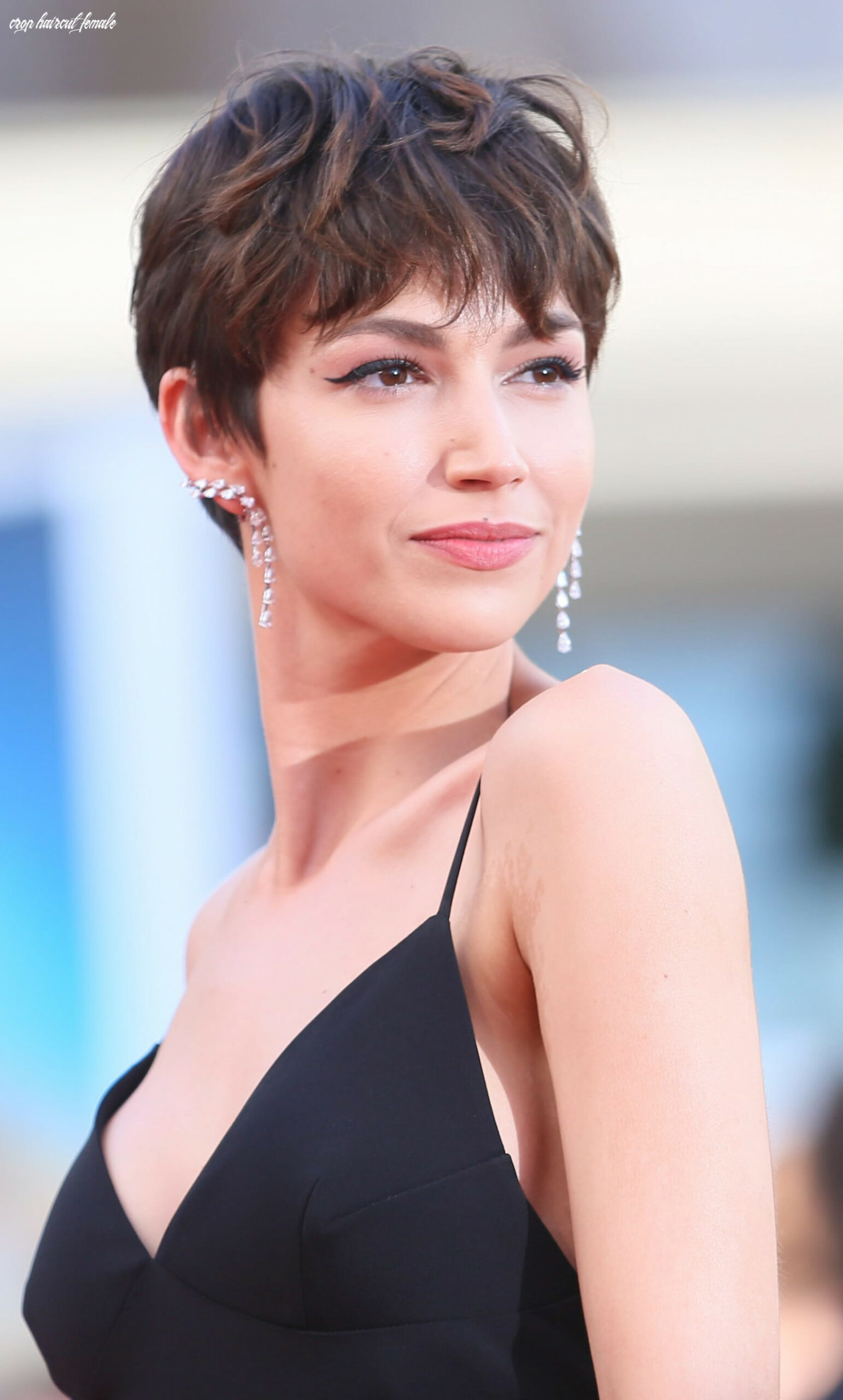11 latest short hairstyles for women for 11 crop haircut female