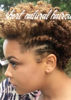 Natural Hairstyles for Black Women in 8 – Short, Curly and ...