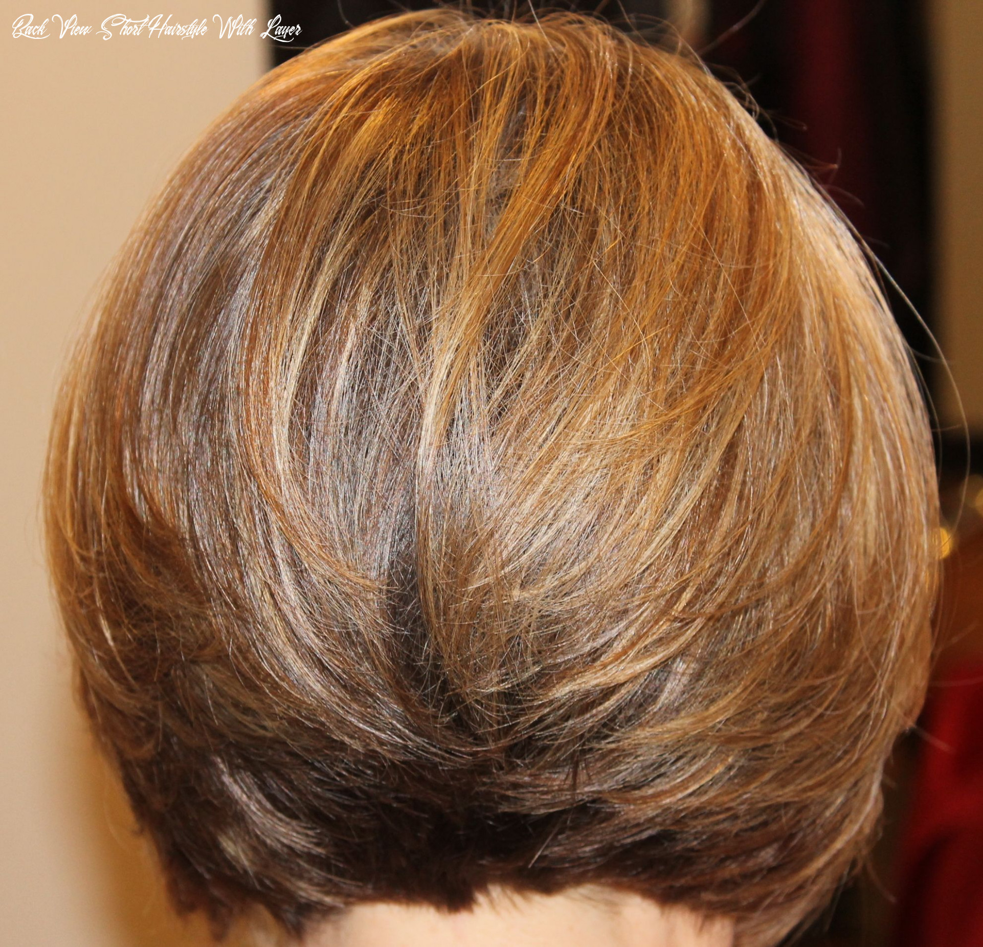 Pin on archive back view short hairstyle with layer
