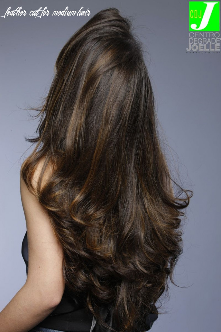 Pin on cabelo feather cut for medium hair