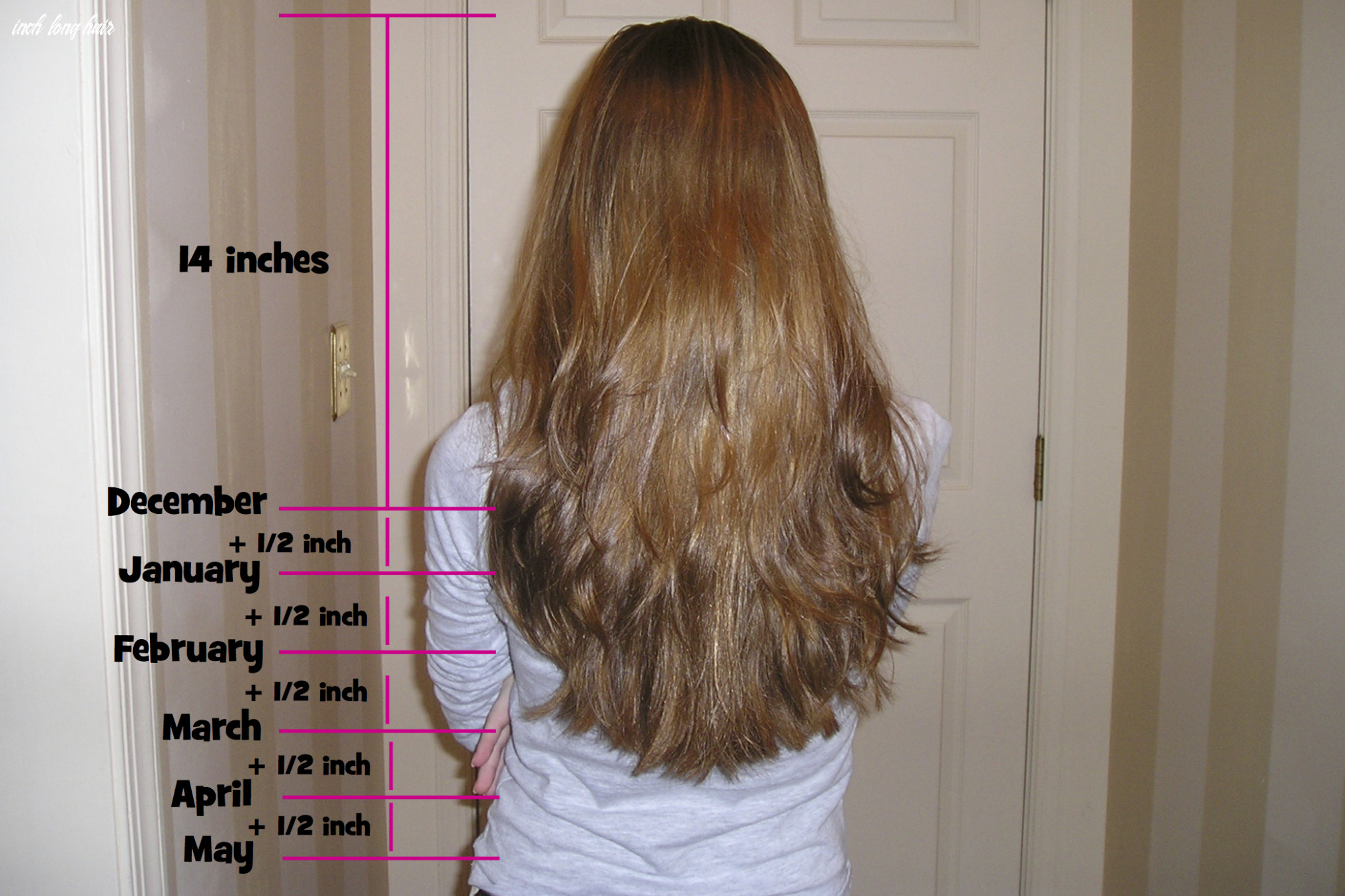 Your miles and miles of hair—bedtime math—daily math inch long hair
